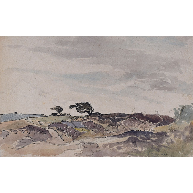 Claude Muncaster Note of Foreground near Cadgewith, Cornwall