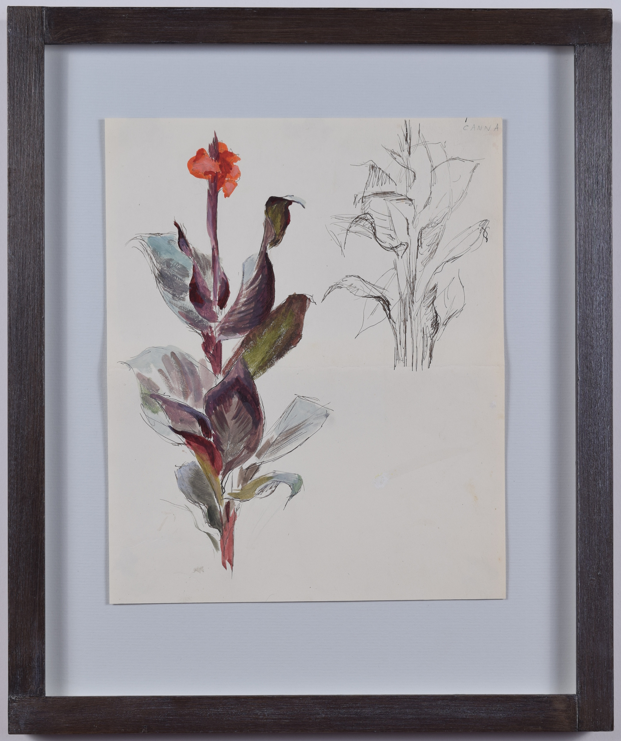 Ellis Canna Lily Nicholson butt-jointed frame