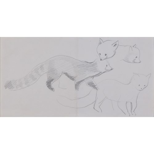 Clifford Ellis Chico Red Panda pencil sketch