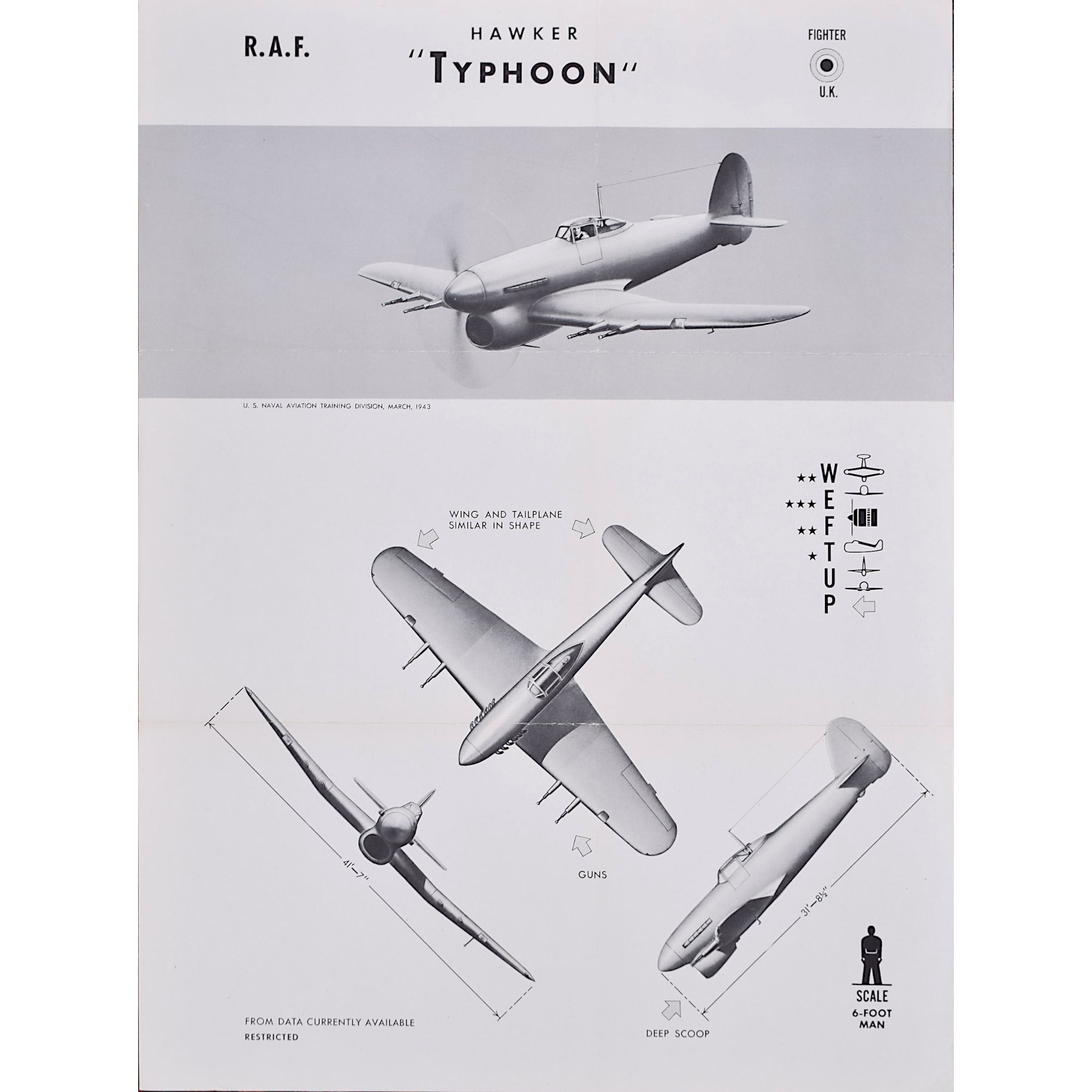 RAF Hawker Typhoon original WW2 aircraft recognition poster