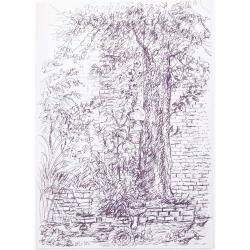 Tree original pen and ink sketch Derrick Sayer for Beverley Nichols Cats ABC