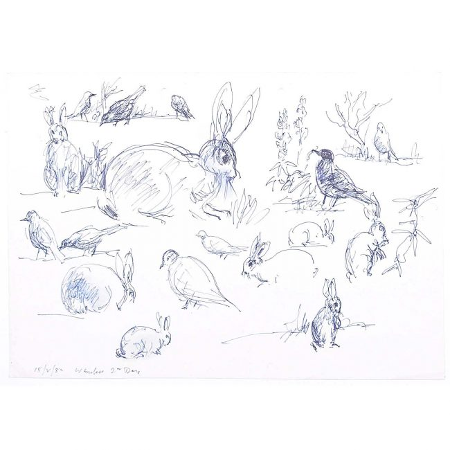 Derrick Sayer Rabbits for Beverley Nichols Cats ABS Pen and Ink Sketch