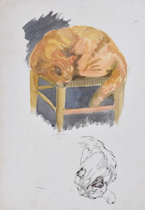 Hilary Hennes Miller, 'Cat Sleeping' (c.1940), Gouache, pen and ink on paper